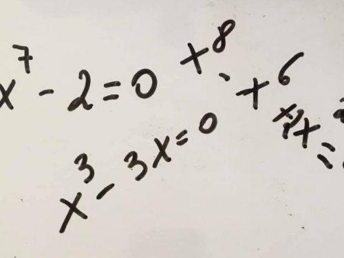 Equazioni binomie trinomie reciproche ed altre equazioni algebriche
